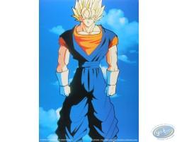 Dragon Ball Z n°10