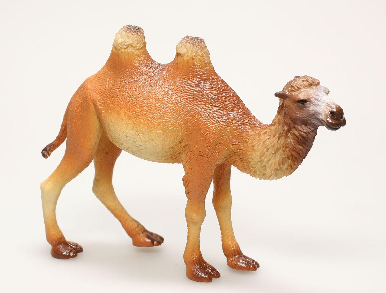 Les Figurine plastique Animaux Chameau Delprado